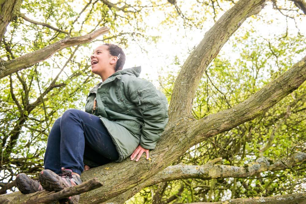 scout-in-tree-jpg